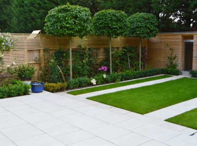 Modern Garden with Pleached Trees