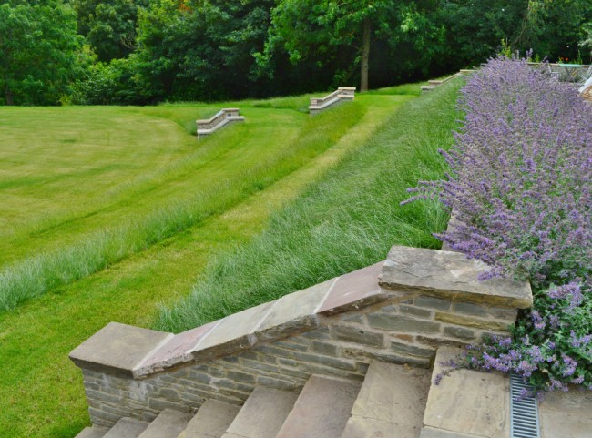 Mown Pathways and Steps in Lawn