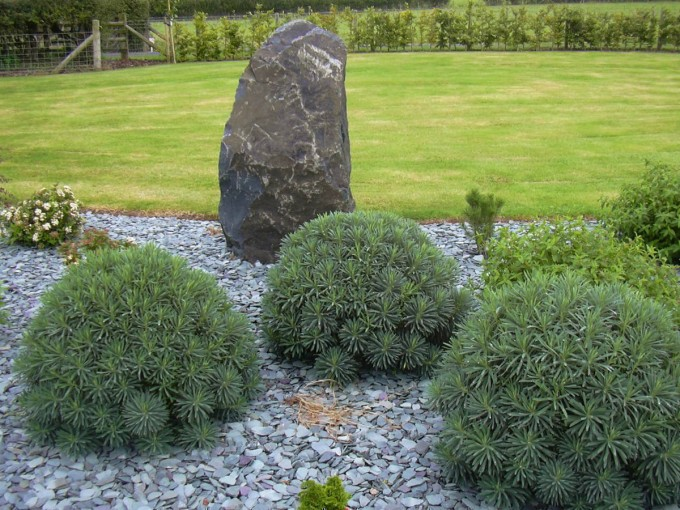 Planting and Boulders